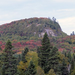 moose mountain
