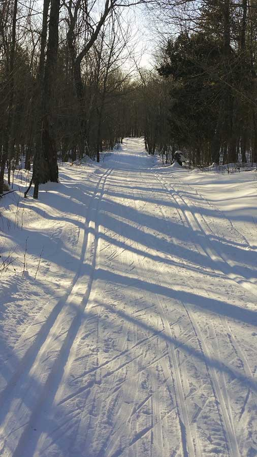 Sugarbush Ski Trails