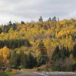 fall colors highway 61