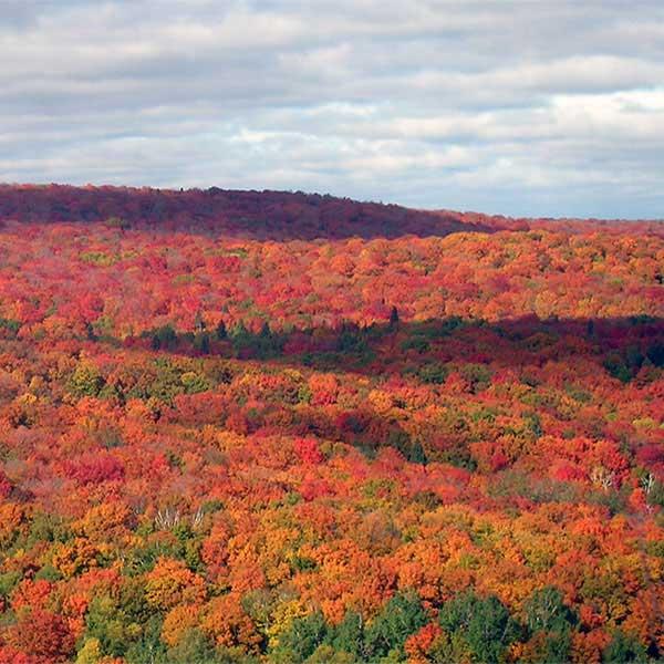 north shore fall color tour