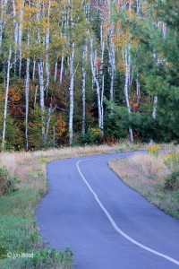 Autumn road to Palisade Head
