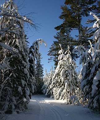Flathorn Gegoka Ski Trails