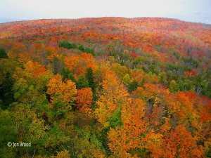 Gorgeous fall colors near Tettegouche State Park