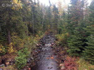 On the Sawbill Trail, Tofte