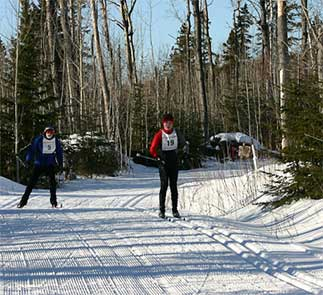 Ski & Bike Trails-Pincushion near Grand Marais
