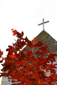 red maple at maple hill church near grand marais
