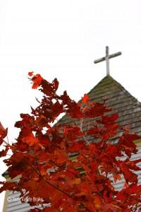 Red Maple, Maple Hill Church near Grand Marais
