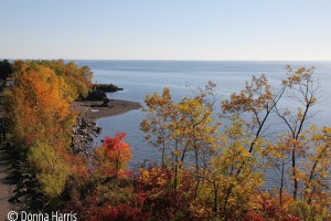Autumn, Scenic 61