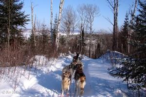 Sled dog rides, Gunflint Trail