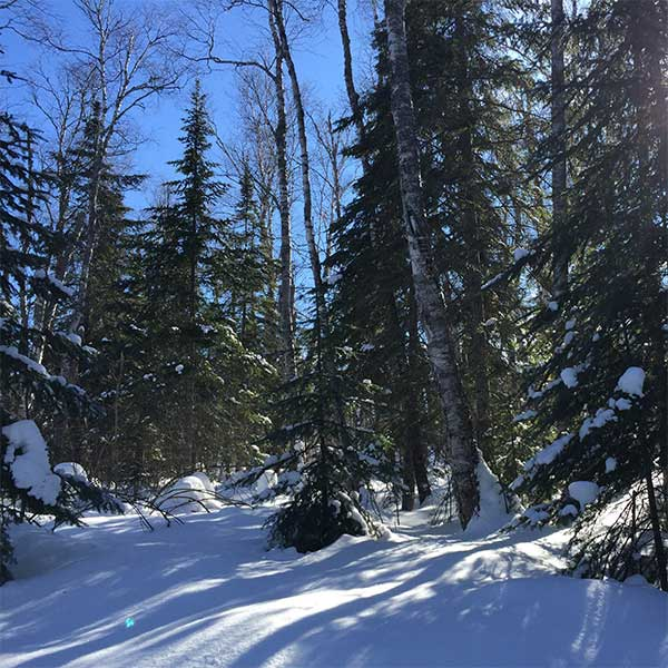 trail snow report