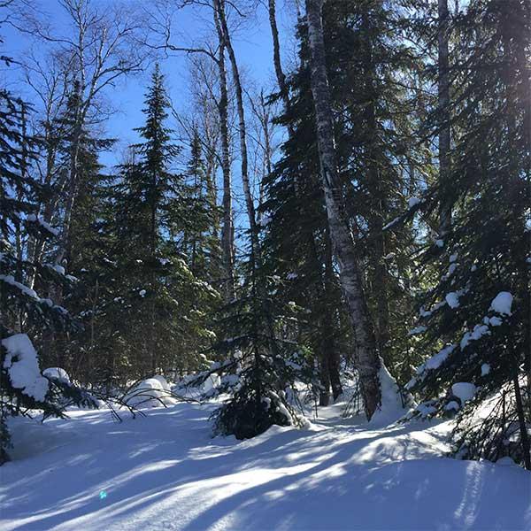 trail snow report