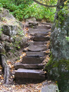 stone stairs on hiking trail