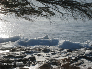 wintry shoreline