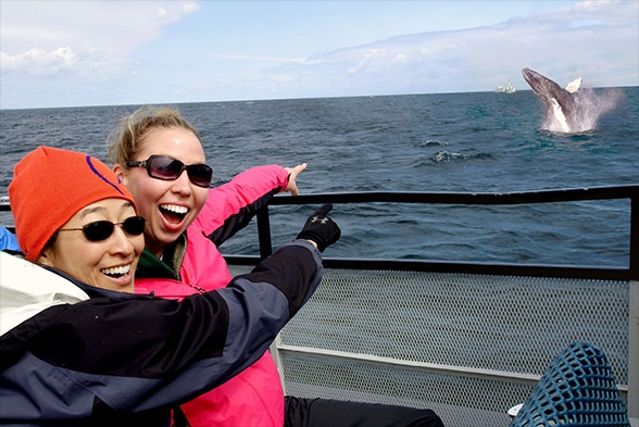 two excited women point out whale jumping from lake superior