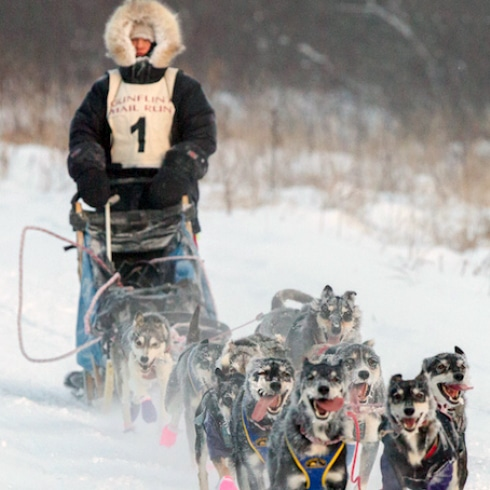 Gunflint Mail Sled Dog Race