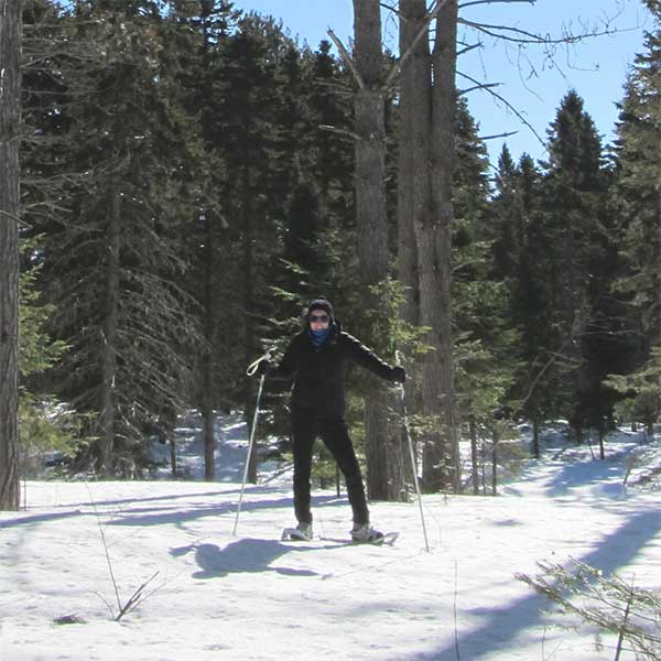 snowshoe on the north shore