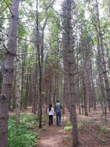 hiking at sugarloaf
