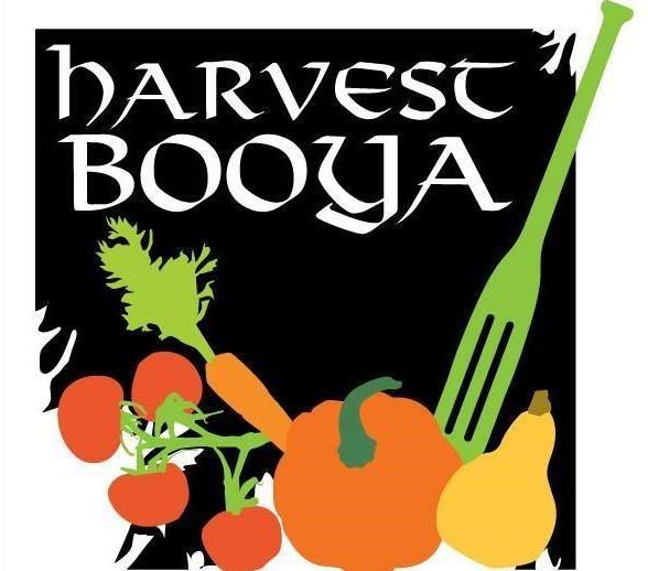 Harvest Booya