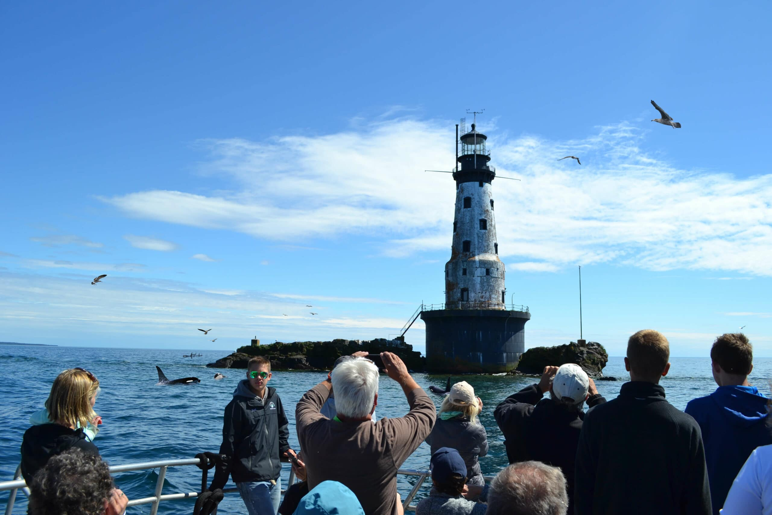 tour boat group looking at rock of ages lighthouse at isle royale not seeing whale