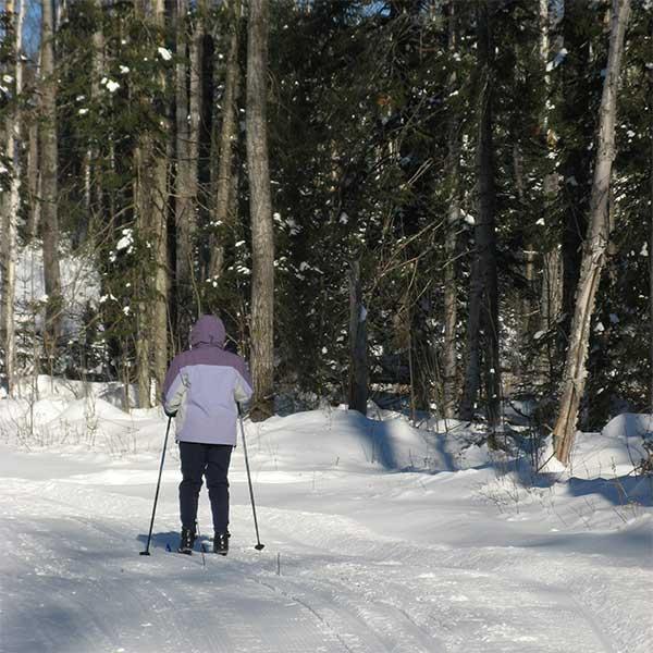 Ski & Snowmobile Trails-Cascade River State Park