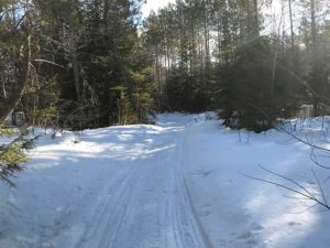 snowmobile tracks on tomahawk trail north shore mn