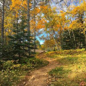 hike sugarloaf cove nature trail