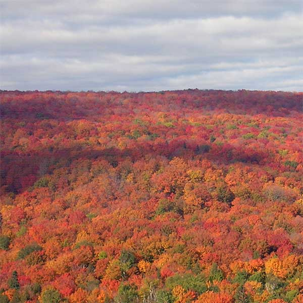 miles of colorful maple hillsides at lutsen mountains mn