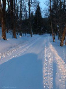 lutsen snowmobile. trails at dusk