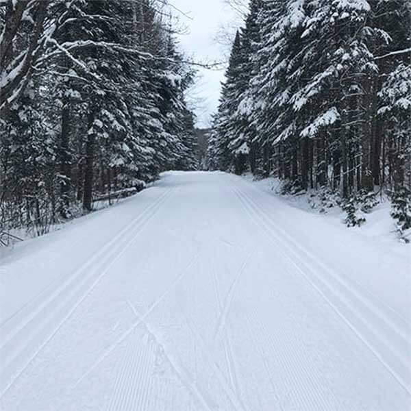Ski Trails-Sugarbush Trails