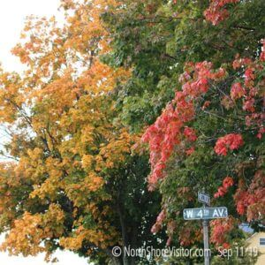 Grand Marais Fall Colors