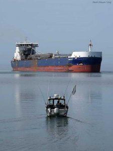 Lonestar Ship David Schauer600x800