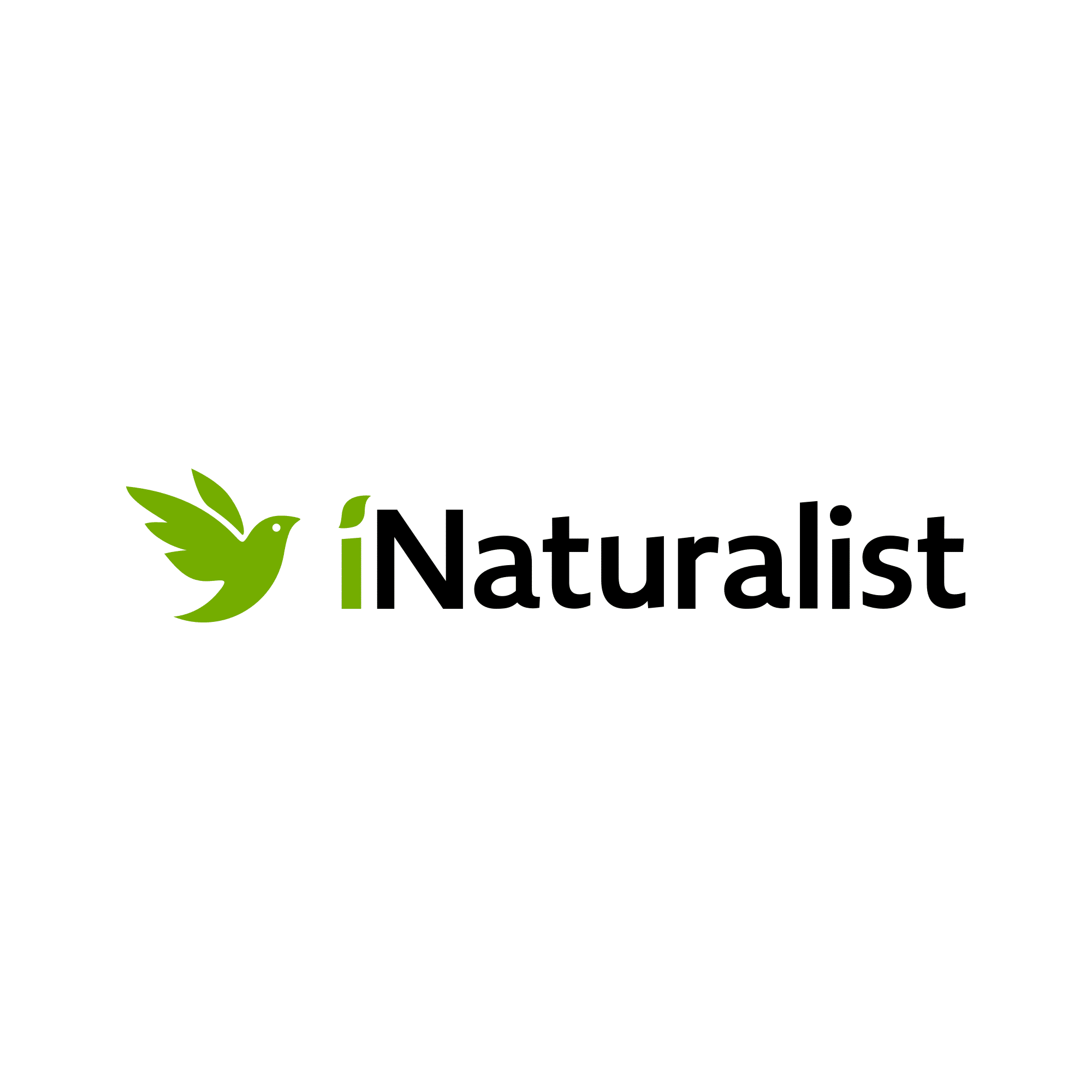 Making iNaturalist work for you