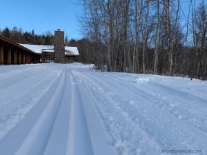 Fresh ski trail