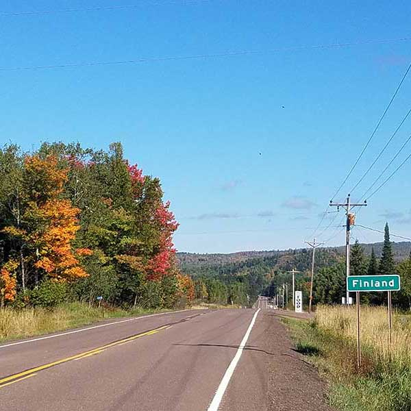 maples turning color along the road leading to finland mn usa