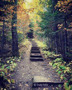 Honeymoon Bluff Stairs