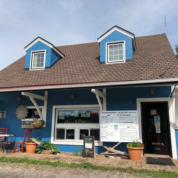 mocha moose summer storefront