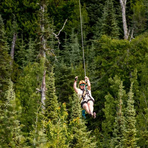 ziplining past treetops at the towering pines canopy tour