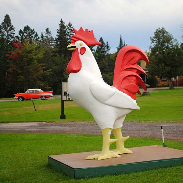 Huge white rooster in front of Weldon's gifts to harbors