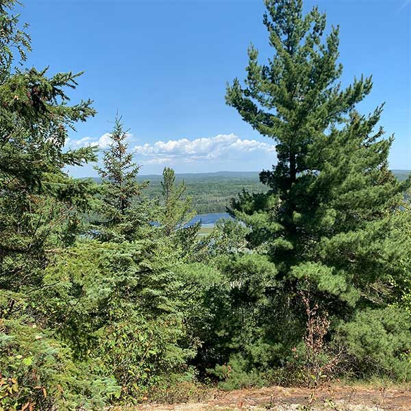 blueberry hill overlook to northern light lake