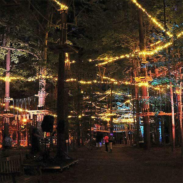 ziplines lit up at night north shore adventure park