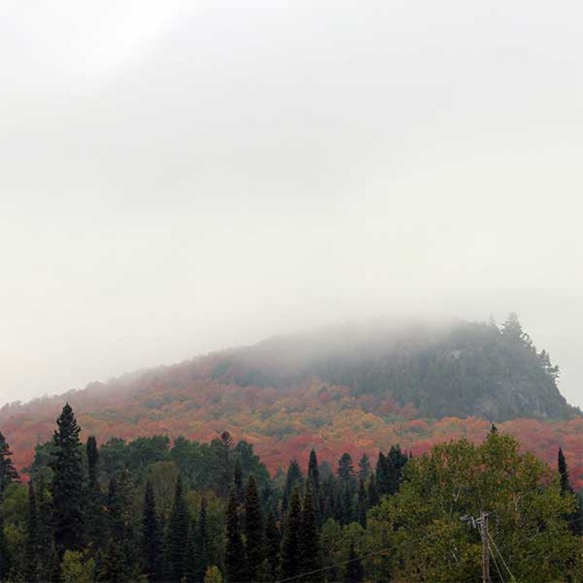 fog rolls up the back of maple covered hillside with rock face