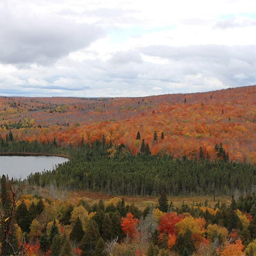 orange and red maple hillsides rise from oberg lake while a stand of evergreens spreads east