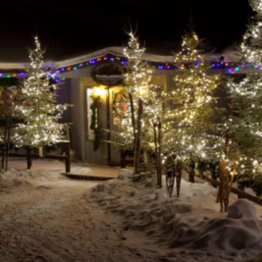gunflint lodge pines decorated with holiday lights