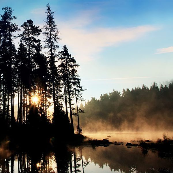 morning mist rises from inland lake