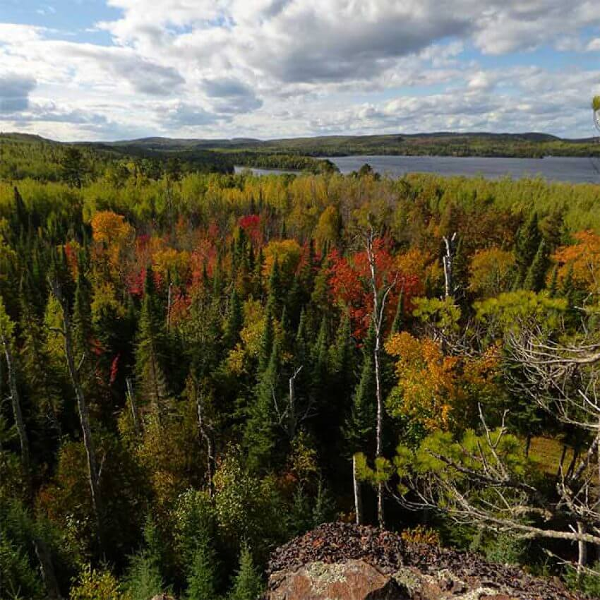 view from magnetic rock, autumn trees and pines with magnetic lake in the distance, off the gunflint trail