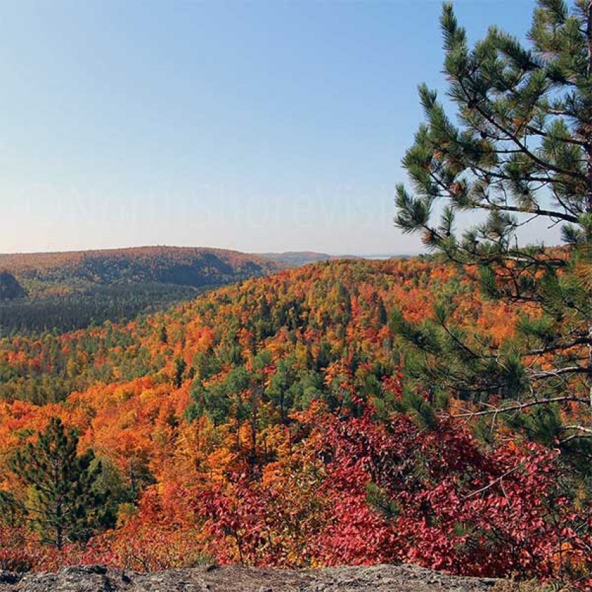 hillsides of orange maples from lax lake overlook