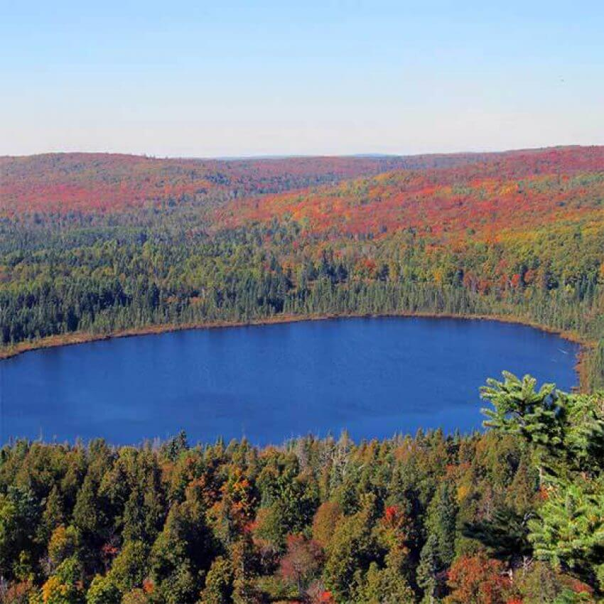 red maples on hillside overlooking oberg lake near lutsen mn in autumn