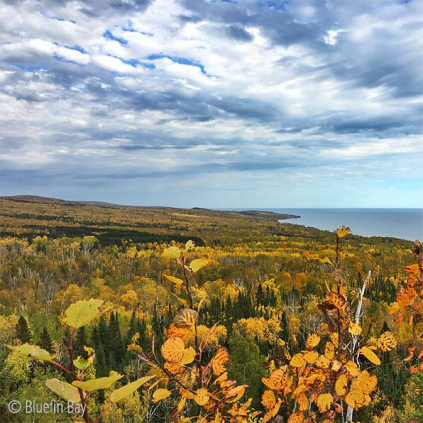 golden fall colors from top of pincushion overlooking lake superior
